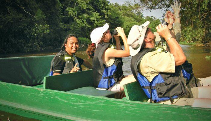 Birdwatching along Borneos' Kinabatangan River