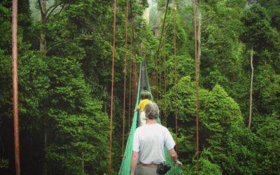 Walking across a jungle bridge in Borneo, Malaysia