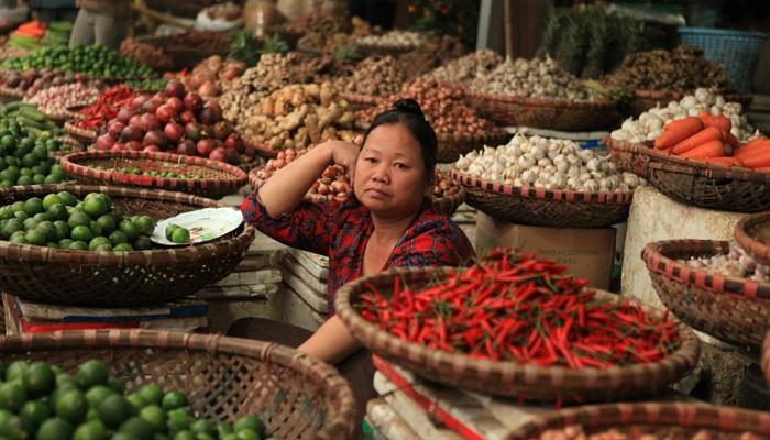 PEREGRINE Gourmet Explorer Vietnam spices