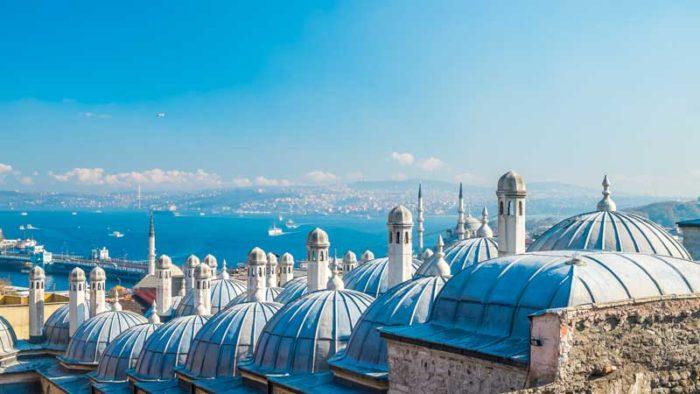 istanbul-rooftops-turkey-peregrine