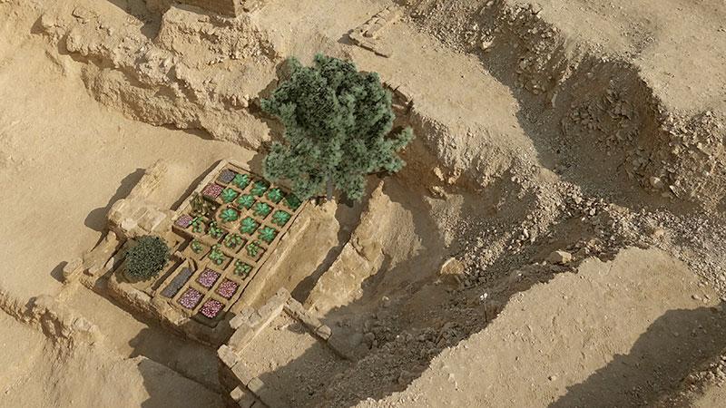 Egyptian discoveries: funerary garden, Luxor
