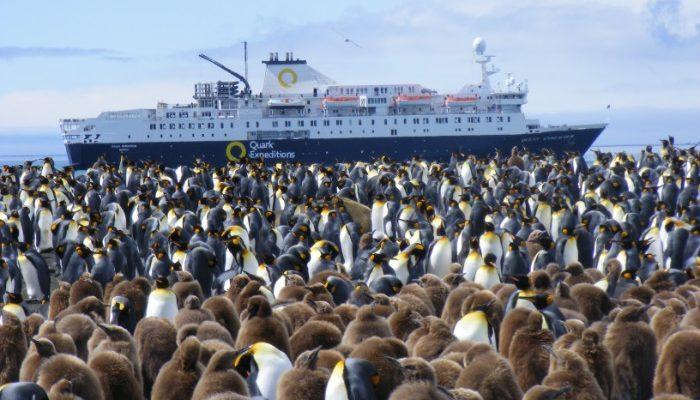 quark ship and penguins