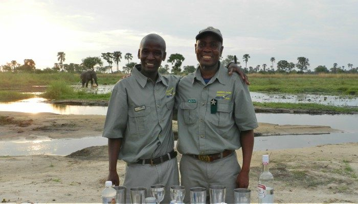 Peregrine leaders in the Okavango Delta