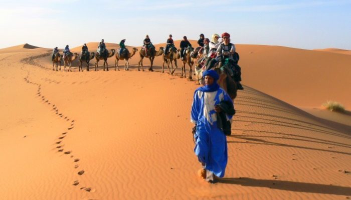 group of travellers ride camels in the Sahara