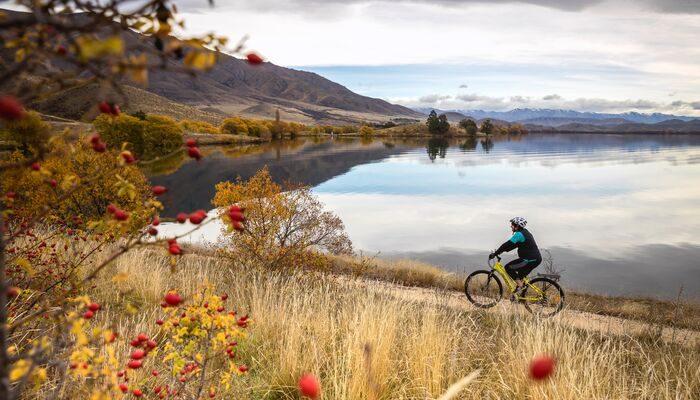 Cyclist in Wanaka
