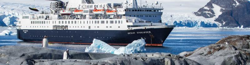 Antarctica, South Georgia and Falklands Odyssey