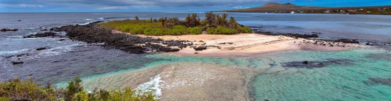 GMQB_ecuador_floreana_island_galapagos