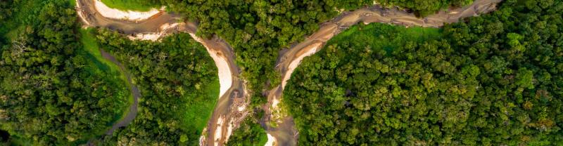 Aerial shot of winding Amazon River threading the lush green jungle