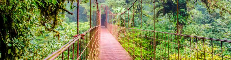 Explore the highlights of Costa Rica with Peregrine Adventures