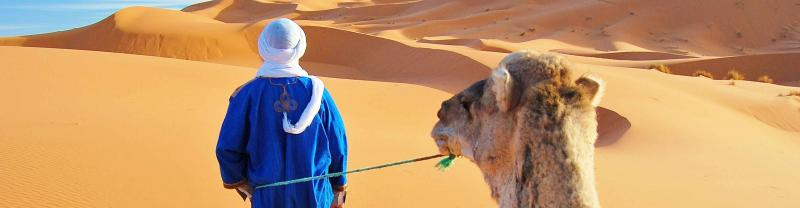 Morocco Desert Camel Man Dunes