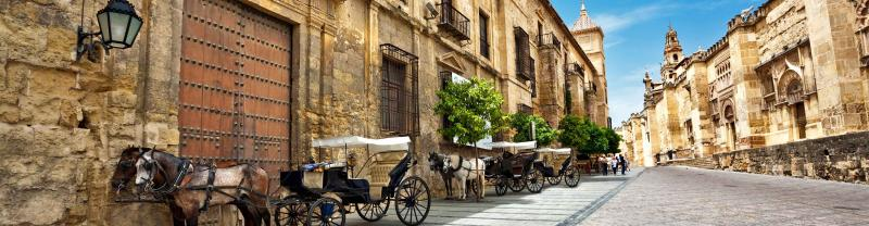 Spain Cordoba Horse Cart Street