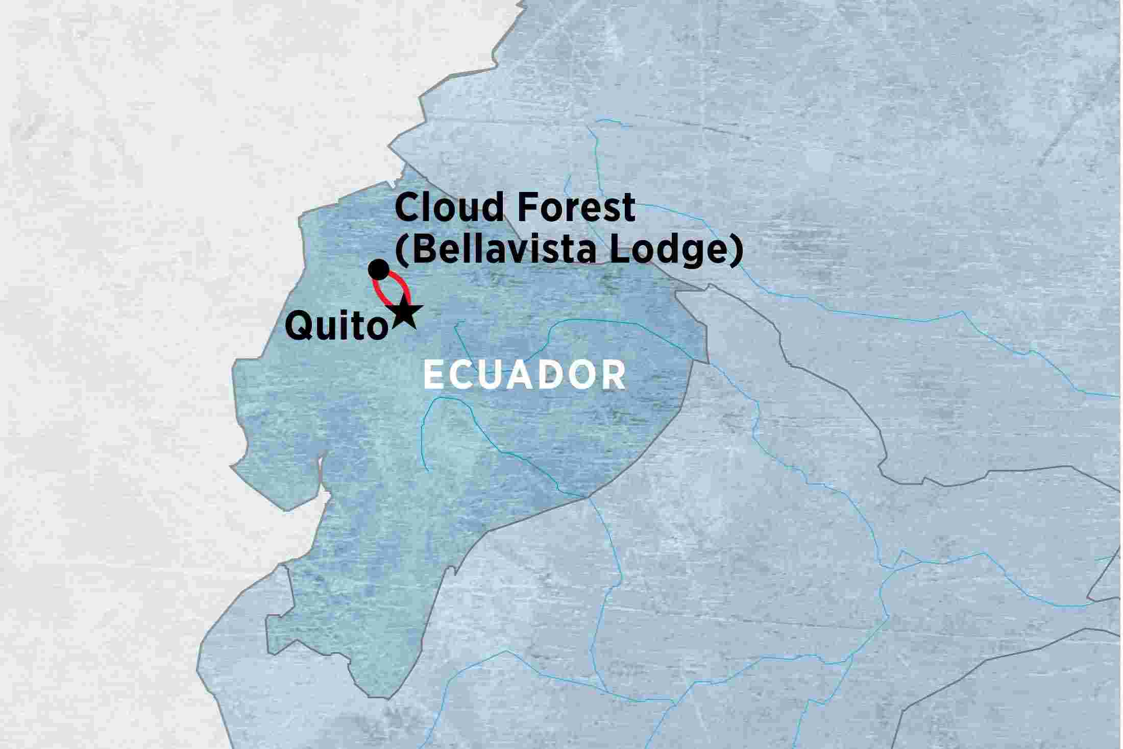 Ecuador tours travel trips peregrine adventures de cloud forest experience independent gumiabroncs Image collections