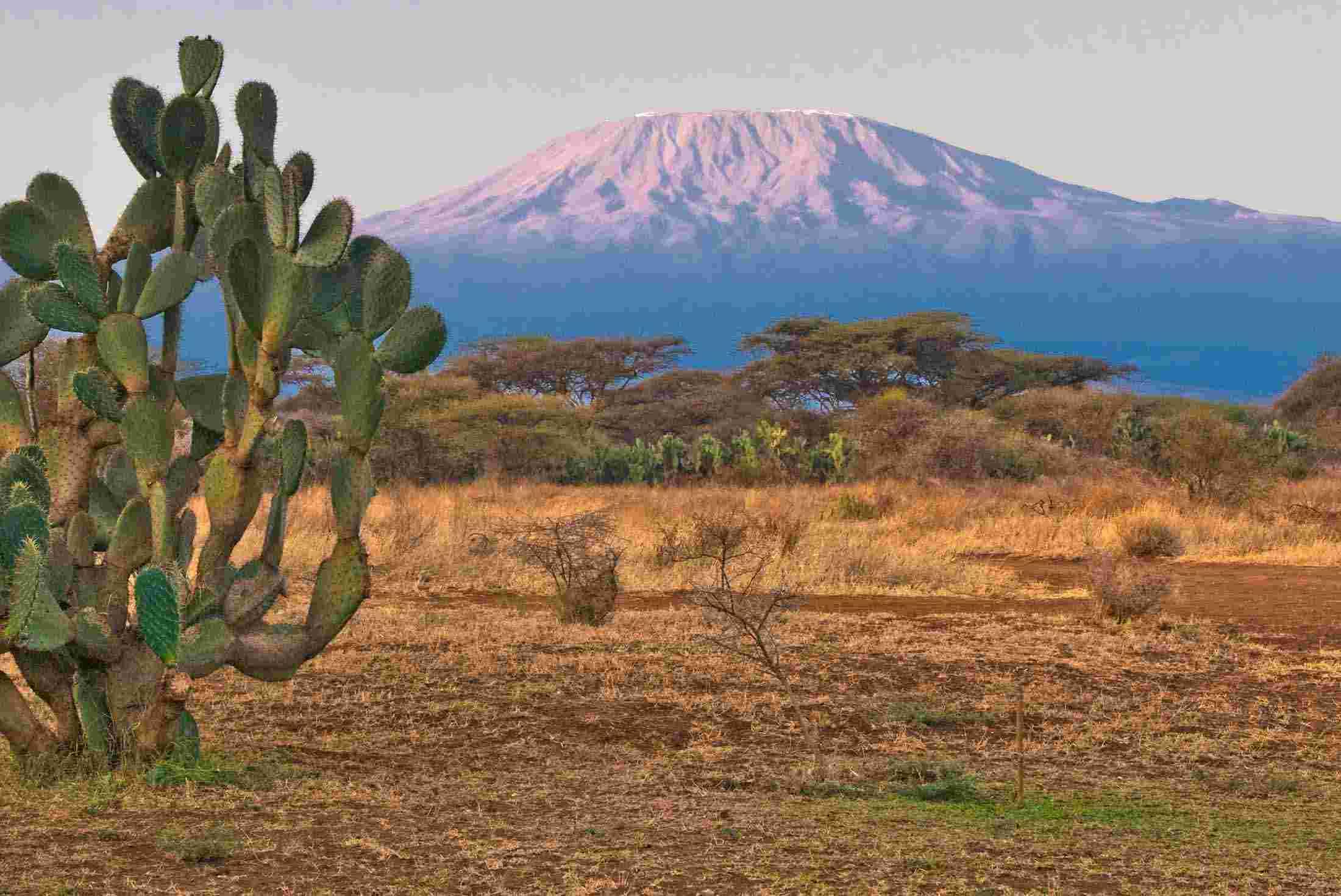 tanzania tours travel trips peregrine adventures us